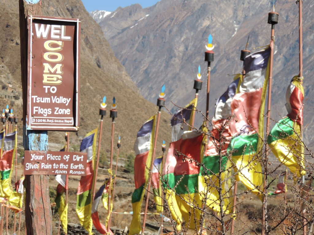 Prayer flags fluttering in the wind.