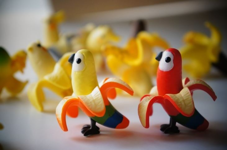 banana colourful birds