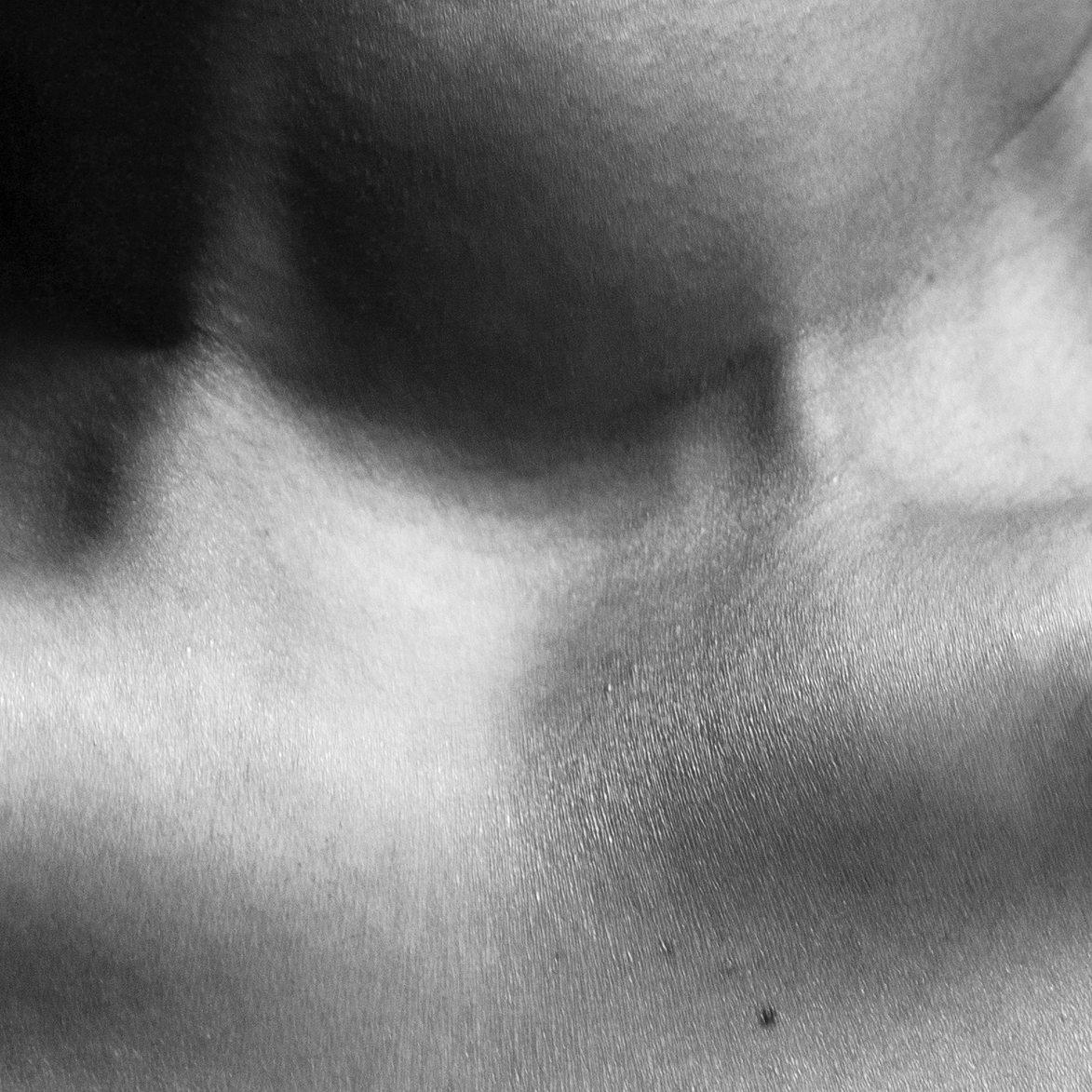 Abstract black and white photographs depict beauty in the human body